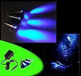 creative lights - Licht & Design Aquarium Mondlicht, LED 3-Fach Spot SCHWENKBAR Komplettset INKL. NETZTEIL