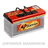 Batteria auto 100AH Banner Power Bull Professionale ricambio 88Ah 92Ah 95Ah