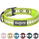 Blueberry Pet Halsbänder für Hunde 2cm M 3M Reflektierendes Hundehalsband in Ara-Grün mit Jacquardmuster