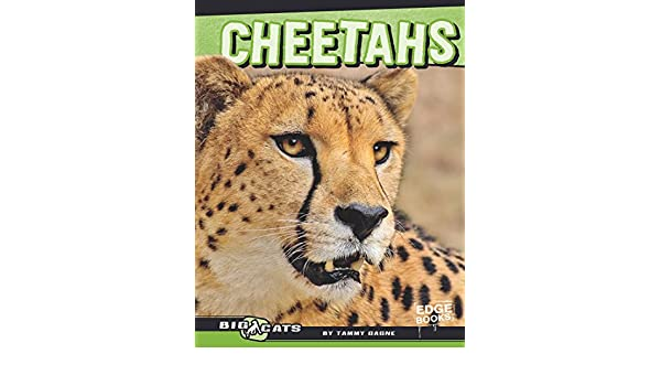 Cheetahs big cats ebook tammy gagne amazon kindle store fandeluxe Ebook collections