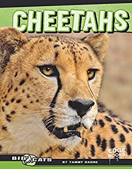 Cheetahs big cats ebook tammy gagne amazon kindle store cheetahs big cats by gagne tammy fandeluxe Ebook collections