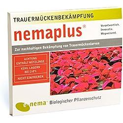 SF Nematoden zur Bekämpfung von Trauermücken 3 Mio für 30 Pflanzen oder 6qm