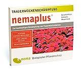 SF Nematoden zur Bekämpfung von Trauermücken 3 Mio für 30 Pflanzen oder 6qm -