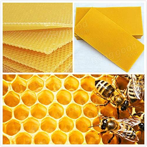 Générique Lot DE 30 Nid d'abeille Fond de Teint Bee Hive Cadres de Cire épilation à la Cire Apiculture équipement Bee Hive Peigne Miel Cadres