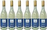 Lambrusco bianco RIUNITE dolce Dell`Emilia DOC (6 X 0,75 L) - Vino Frizzante - Weißer Süßer Perlwein 7,5 % Vol. aus Italien