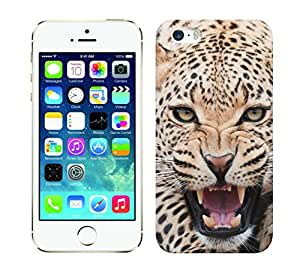 WOW 3D Printed Designer Mobile Case Back Cover For Apple iPhone 5 / iPhone 5/ iPhone 5s / I 5s