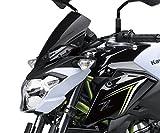 Kawasaki Z650 Windschild getönt Meter Cover