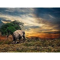 VERO PUZZLE 47328 Animaux Éléphant Dans L39;Himalaya, 2000 Pièces en haute qualité, boîte de puzzle cellophane