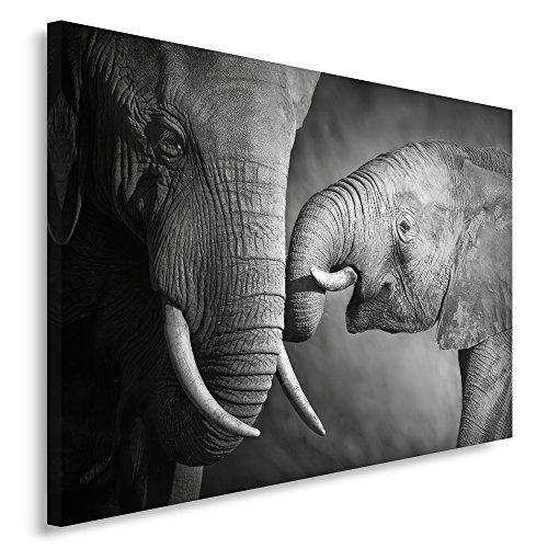 Feeby Frames Cuadro en Lienzo, Cuadro Impresión, Cuadro Decoración, Canvas 80x120 cm,...