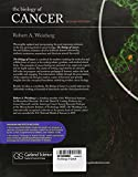 Image de The Biology of Cancer