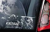CELYCASY - Adesivo per finestrino Auto, Motivo: Deutsch Kurzhaar on Board, Motivo: Cane