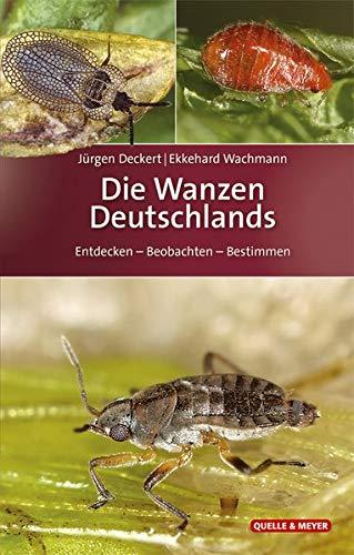 Die Wanzen Deutschlands: Entdecken – Beobachten – Bestimmen (Quelle & Meyer Bestimmungsbücher)
