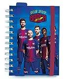 Grupo Erik Editores FC Barcelona- Agenda escolar 2018-2019 día página multilingüe, 11.4 x 16 cm