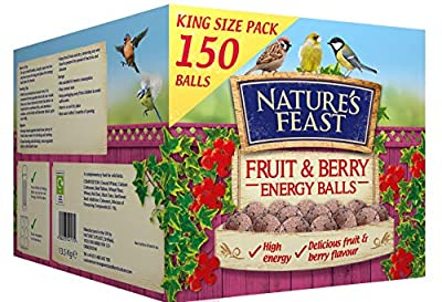 Nature's Feast Fruit and Berry Energy, Suet, Fat Balls For Wild Birds, Pack of 150 by NeatureFeast