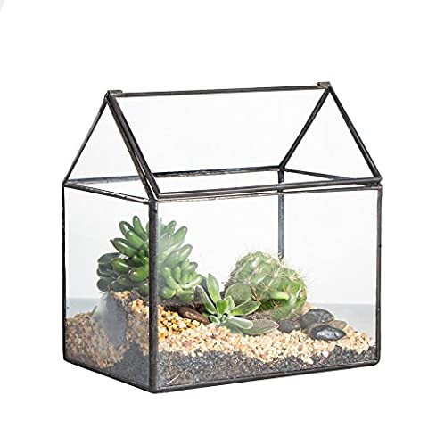 House Shape Close Glass Geometric Terrariumn Tabletop Succulent Plant Box Planter Moss Fern with Swing Lid by NCYP