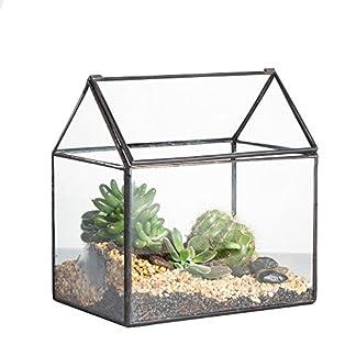 House Shape Close Glass Geometric Terrariumn Tabletop Succulent Plant Box Planter Moss Fern with Swing Lid ¡ 51p9P3NUB6L