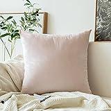 Miulee velluto morbido Soild decorativo quadrato federa cuscino set custodia per divano letto auto 60 * 60 cm 1 Piece Rosa