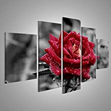 Amazon.it: Quadri Moderni Rosa