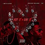 Hate It or Love It [Explicit]