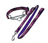 Strimm Starke Gurtband Nylon Kettenhalsband und Doppelgriff/2 Handgriffen Hundeleine Führleine Set für Hundeerziehung und Hundetraining