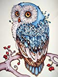 5D DIY Diamond Painting Supplies Crystal Rhinestone Acrylic Paint by Number Kits Embroidery Cross Stitch Arts Craft for Home Wall Decor, Blue Owl