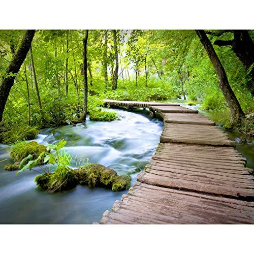 Fototapeten Wasserfall Brücke 352 x 250 cm Vlies Wand Tapete Wohnzimmer Schlafzimmer Büro Flur Dekoration Wandbilder XXL Moderne Wanddeko - 100{be48ac9ca1c7cd4771480b7669593a8b3a256d2b96db6d5a7e6221c13dfc2482} MADE IN GERMANY - Natur Landschaft Runa Tapeten 9035011a