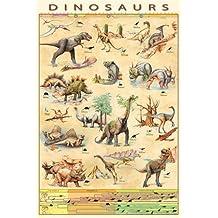 Dinosaurios - Personajes Y Evolución Póster (91 x 61cm)