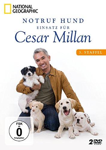 Notruf Hund - Einsatz für Cesar Millan: 3. Staffel [2 DVDs]