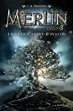 Le grand arbre d'Avalon (1)