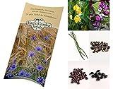 Saatgut Set: 'Exotische Bohnen', 4 verschieden Bohnensorten als Samen in schöner Geschenk-Verpackung