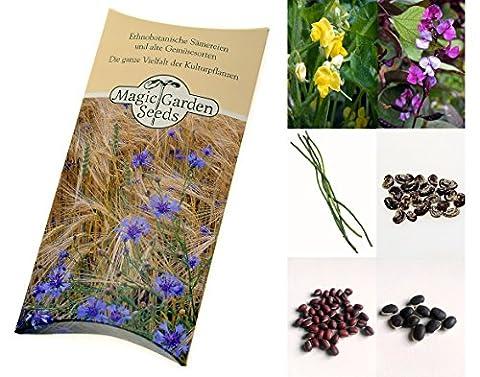 Kit de graines: 'Haricots exotiques', 4 variétés de haricot inhabituelles