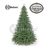 PREMIUM Spritzguss Weihnachtsbaum 210 cm Nobilistanne OXBURGH Edeltanne Kunsttanne Spritzgusstanne Hallerts Plastip