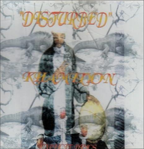 Disturbed the Album