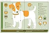 Hund – Betriebsanleitung: Inbetriebnahme, Wartung und Instandhaltung - 2