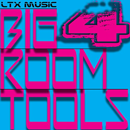Big Room Tools (Volume 4) [Explicit] - Tool Room