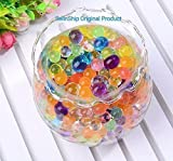 #5: SellnShip Crystal Water Jelly Orbeez Balls Bottle Packing Set Colorful Magic Mud Soil Gel 500+ Beads Mixed Multi Color