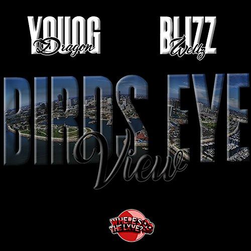 Birds Eye View [Explicit] (Birds Eye View)