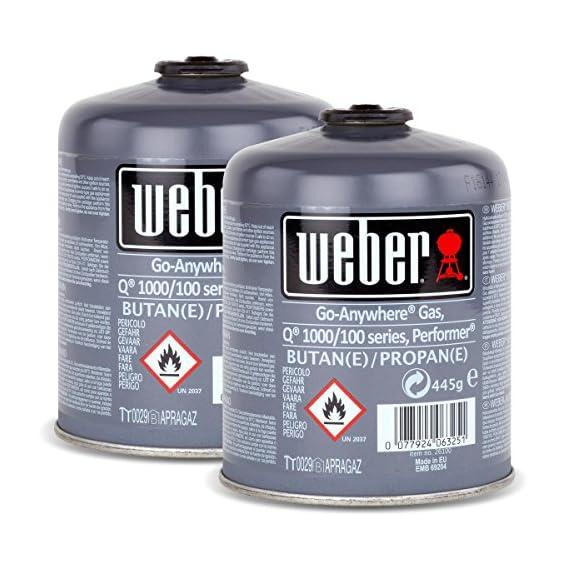 2x Weber Gas Kartusche 26100 Fr Q 100 Serie Und Performer Touch N Go