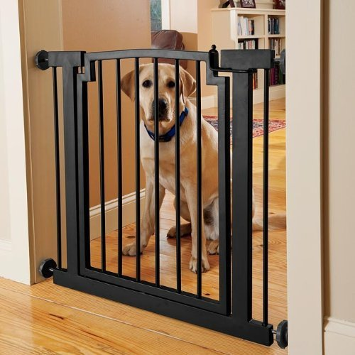 orvis-wrought-iron-door-frame-gate-hallway-large-by-orvis