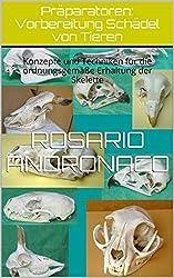 Präparatoren: Vorbereitung Schädel von Tieren: Konzepte und Techniken für die ordnungsgemäße Erhaltung der Skelette (German Edition)