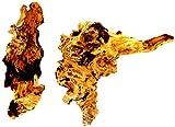 Mühlan Pflanzenhandel 2 Wurzeln aus Opuwaholz ca. 10-20 cm, Opuwa