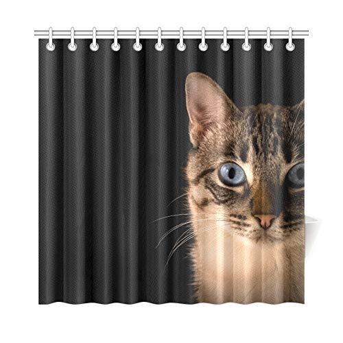 JOCHUAN Home Decor Bad Vorhang Katze Tier Kätzchen Pet Augen Whiskers Ohren Polyester Stoff Wasserdicht Duschvorhang Für Badezimmer, 72 X 72 Zoll Duschvorhänge Haken Enthalten