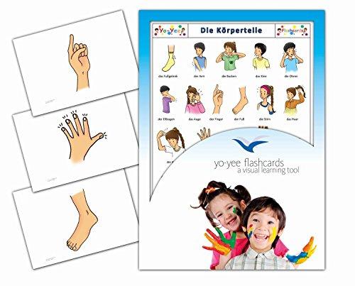 Yo-Yee Flashcards Bildkarten zur Sprachförderung – Grundwortschatz Körper / Körperteile - Für Kinder und Erwachsene in Kita, Kindergarten, Grundschule, Logopädie, Autismus, Demenz und Therapie