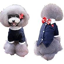 WWDP La primavera y el verano del smoking de perrito Pequeño Ropa para mascotas Ropa para mascotas ( Tamaño : XL )