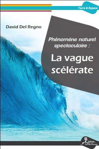 Phénomène naturel spectaculaire : La vague scélérate