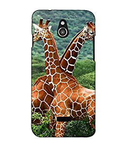 Fuson Designer Back Case Cover for InFocus M2 (Giraffe Forest Jungle Couple)
