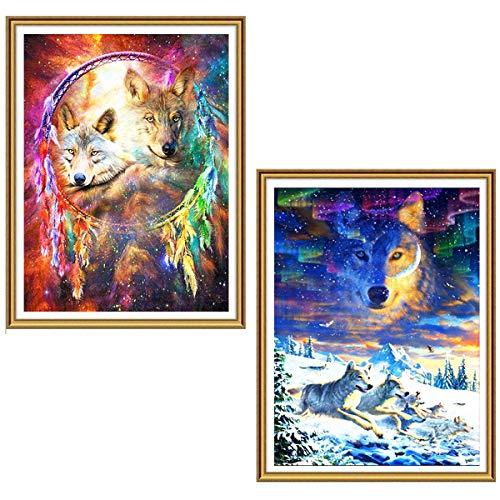 Ginfonr 5D DIY Diamant Gemälde Full Drill Traumfänger Wolf & Arctic Wolf nach Zahlen Kits für Erwachsene, Aurora Stickerei Strass Paint mit Diamant-Kunst Kreuzstich Craft 30,5 x 40,6 cm, 2 Packungen (Catcher Kit Für Erwachsene)