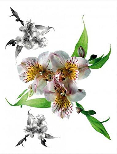 1art1 59572 Blumen - Weiß Gemusterte Orchideen Wand-Tattoo Aufkleber Poster-Sticker 85 x 65 cm -