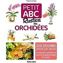 a6298adadcb3 Amazon.fr   Articles en stock uniquement - Plantes d intérieur ...