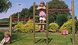 Outdoor Garten Kletter-Reck Kletter-Leiter Kombination im Gesamtmaß von ca. 260